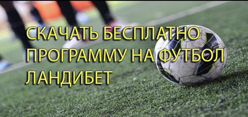 Betcity ru new